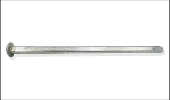 Picture of Galvanized Spike